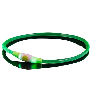 Bee Seen Dog Led Band USB Green