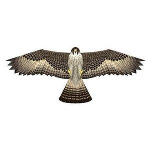 X-Kites Birds of Prey vlieger valk 122cm